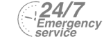 24/7 Emergency Service Pest Control in Rickmansworth, Chorleywood, Croxley Green, WD3. Call Now! 020 8166 9746