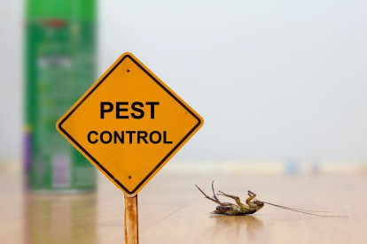 Pest Contol in Rickmansworth, Chorleywood, Croxley Green, WD3. Call Now 020 8166 9746